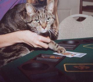 Desire post Tigger poker 2
