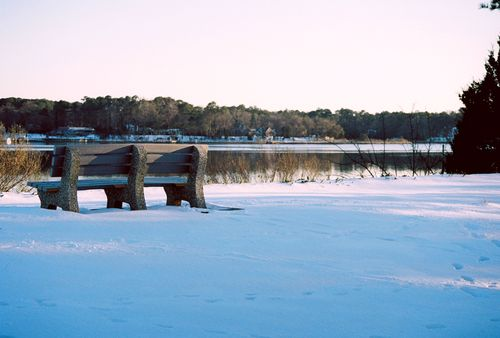Bench by water in the snow