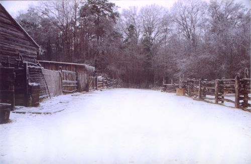 Snowy path fence and barn