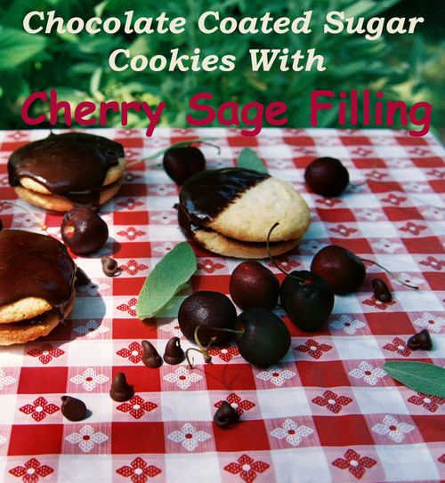 Chocolate coated sugar cookies with cherry sage filling 3 copy