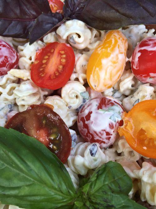 Basil Lemon Verbena Tarragon Pasta Salad With Artisan Tomatoes 6