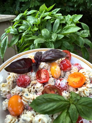 Basil Lemon Verbena Tarragon Pasta Salad With Artisan Tomatoes 3