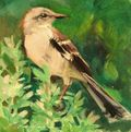 Virginia Vaughan 2-Bird-Mocking Sage-