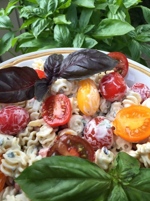 Basil Lemon Verbena Tarragon Pasta Salad With Artisan Tomatoes 2