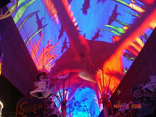Jennifer's Las Vegas 060
